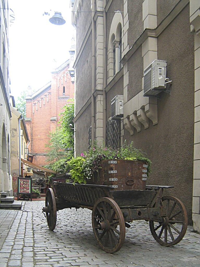 Riga-16
